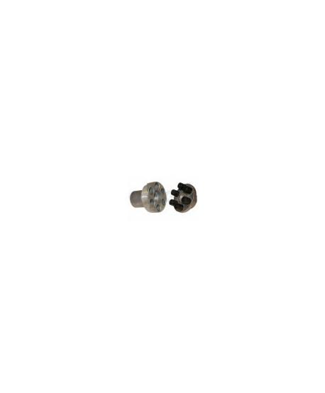 INTERPUMP-Elastische Kupplung W99