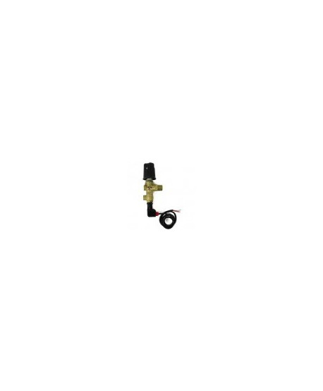 Válvula de reg. VB9 con puño y microinterruptor Hoyo manóm. 1xG1/4H