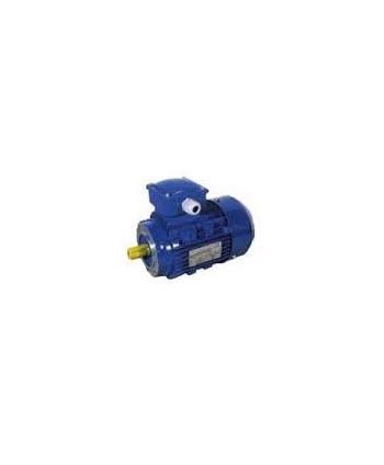 Three-phase Motor of 0.75 HP to rotating 600-800-1000