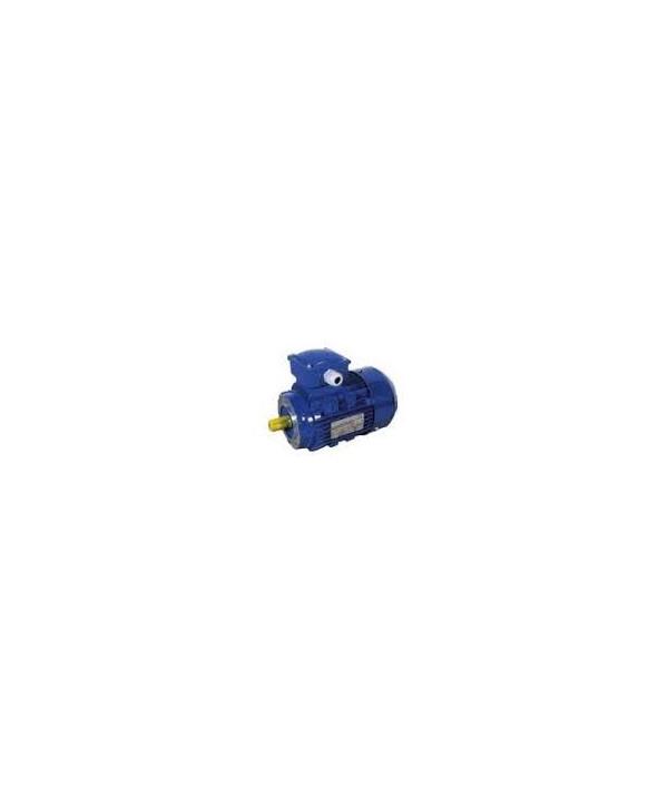 Motor trifásico de 0,75 CV para rotativa de 600-800-1000